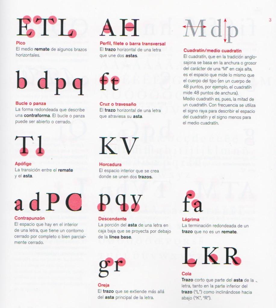 Nombre y descripción de las partes de una letra 3