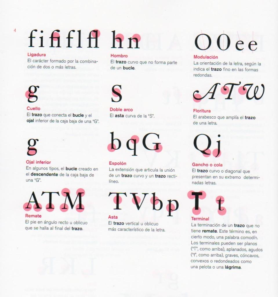 Nombre y descripción de las partes de una letra