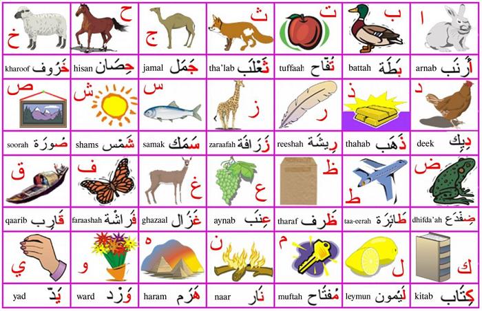 Alfabeto árabe con dibujos Alifato para niños
